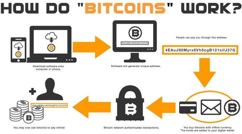 All the Information You Need to Know about Bitcoin & It
