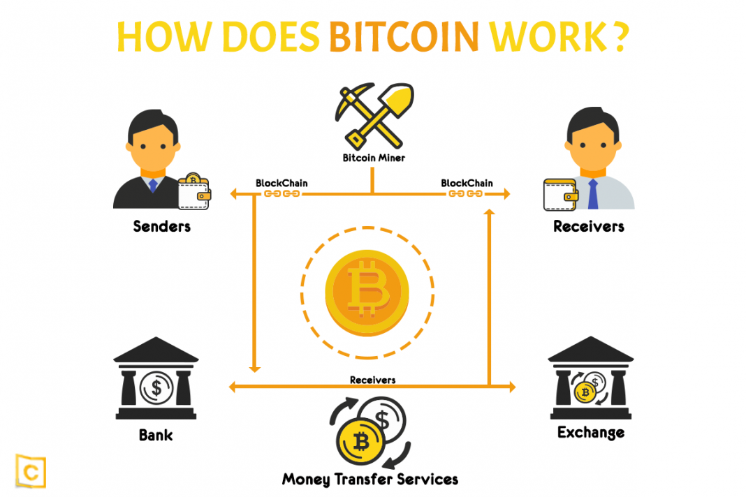 what is bitcoin bitcoin cash system cryptocurrency